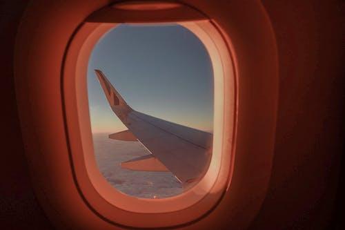 Imagine de stoc gratuită din apus, avionul de avion, călătorie