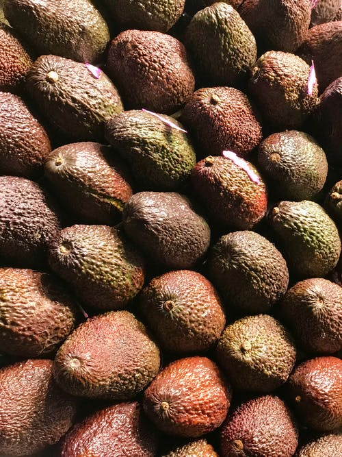 Gratis stockfoto met avocado, close-up, detailopname, fruit