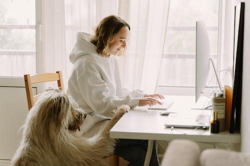 Gratis lagerfoto af arbejde hjemmefra, bord, bruger bærbar computer