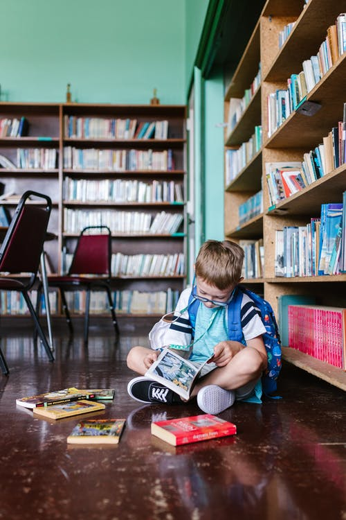 Fotos de stock gratuitas de biblioteca, chico caucásico, de vuelta a la escuela