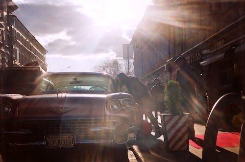 35mm, 가로 사진, 거리 streetphoto 태양, 불꽃의 무료 스톡 사진