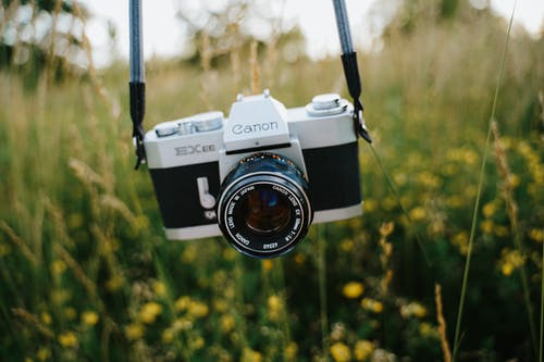 Close-Up Photo of a Canon Digital Camera