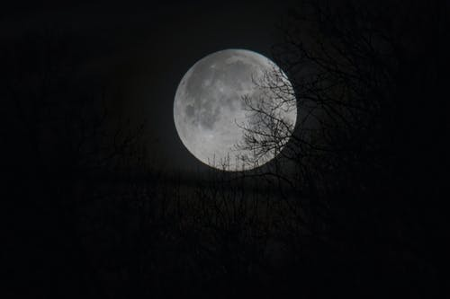 Free stock photo of moon, super blue moon