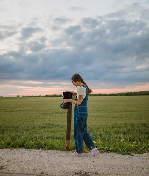 Foto stok gratis anak, anak laki-laki, bidang