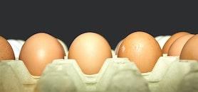 food, eggs, tray