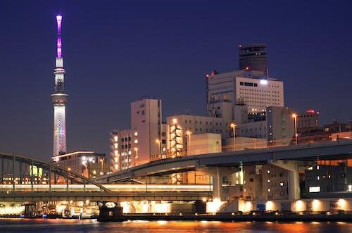 Illuminated Bridges and Sumida Tower During Night Time