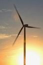 Brown 3-blade Windmill on Surise