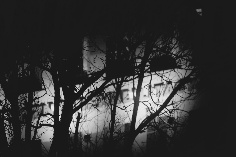 Free stock photo of night