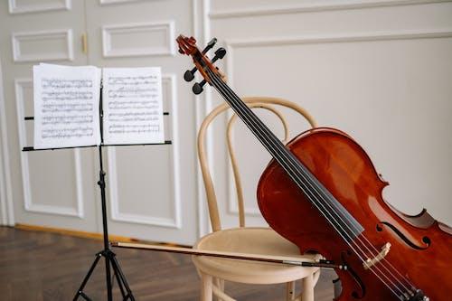 Close-Up Shot of a Cello