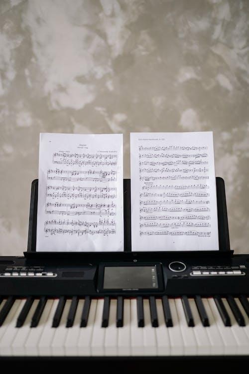 수직 쐈어, 악기, 음악의 무료 스톡 사진