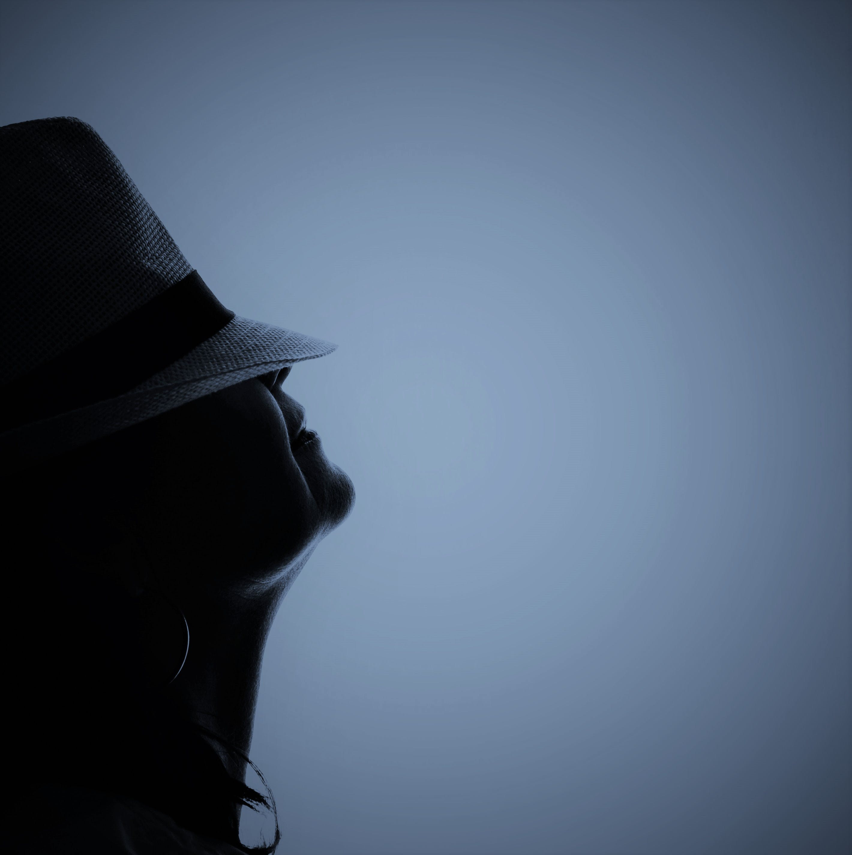 Silhouette Photo of Person Wearing Hat