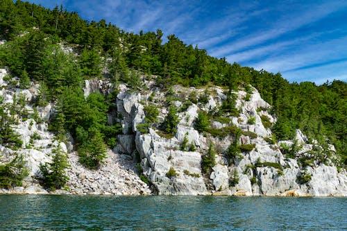 天性, 山, 景觀, 樹木 的 免费素材照片