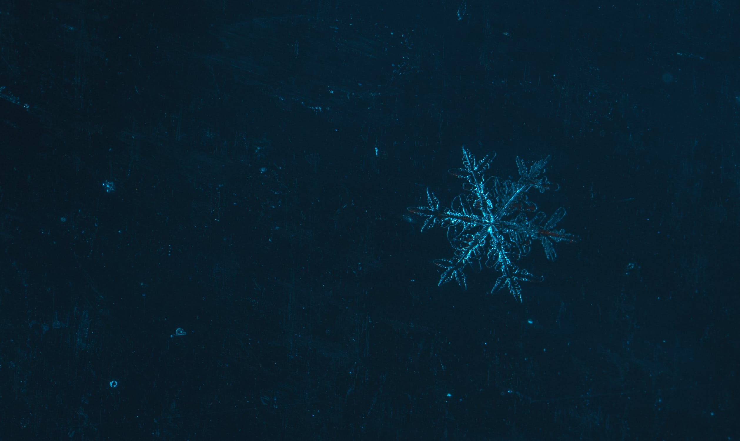 Free stock photo of macro, snowflake