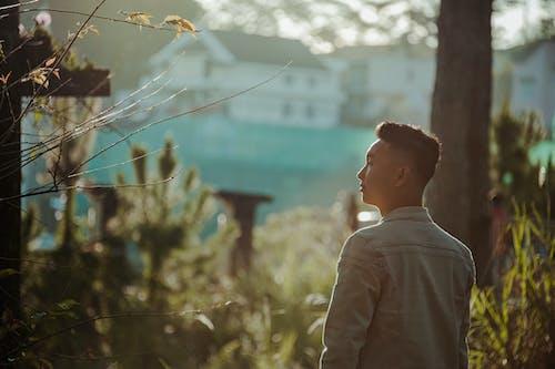 Fotobanka sbezplatnými fotkami na tému Ázijčan, človek, denné svetlo, domy