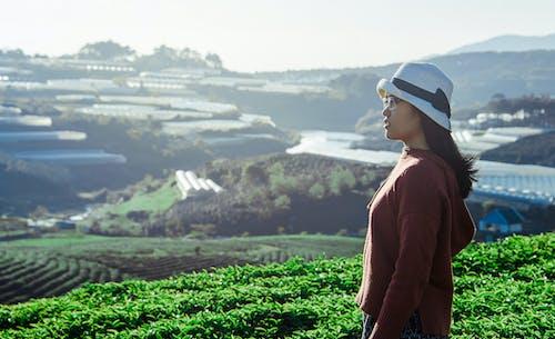 Kostnadsfri bild av åkermark, bergen, bondgård, dagsljus