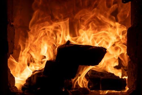 Close-Up Shot of Burning Firewoods