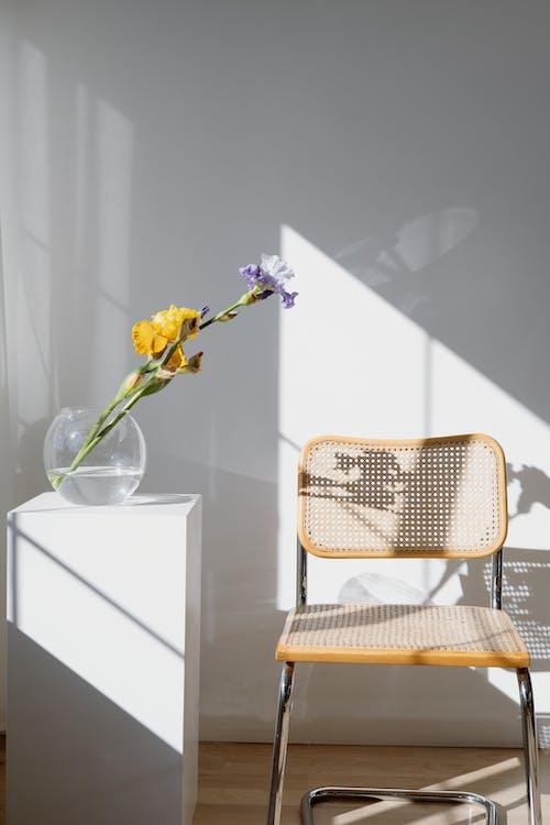 Imagine de stoc gratuită din cameră, contemporan, design interior