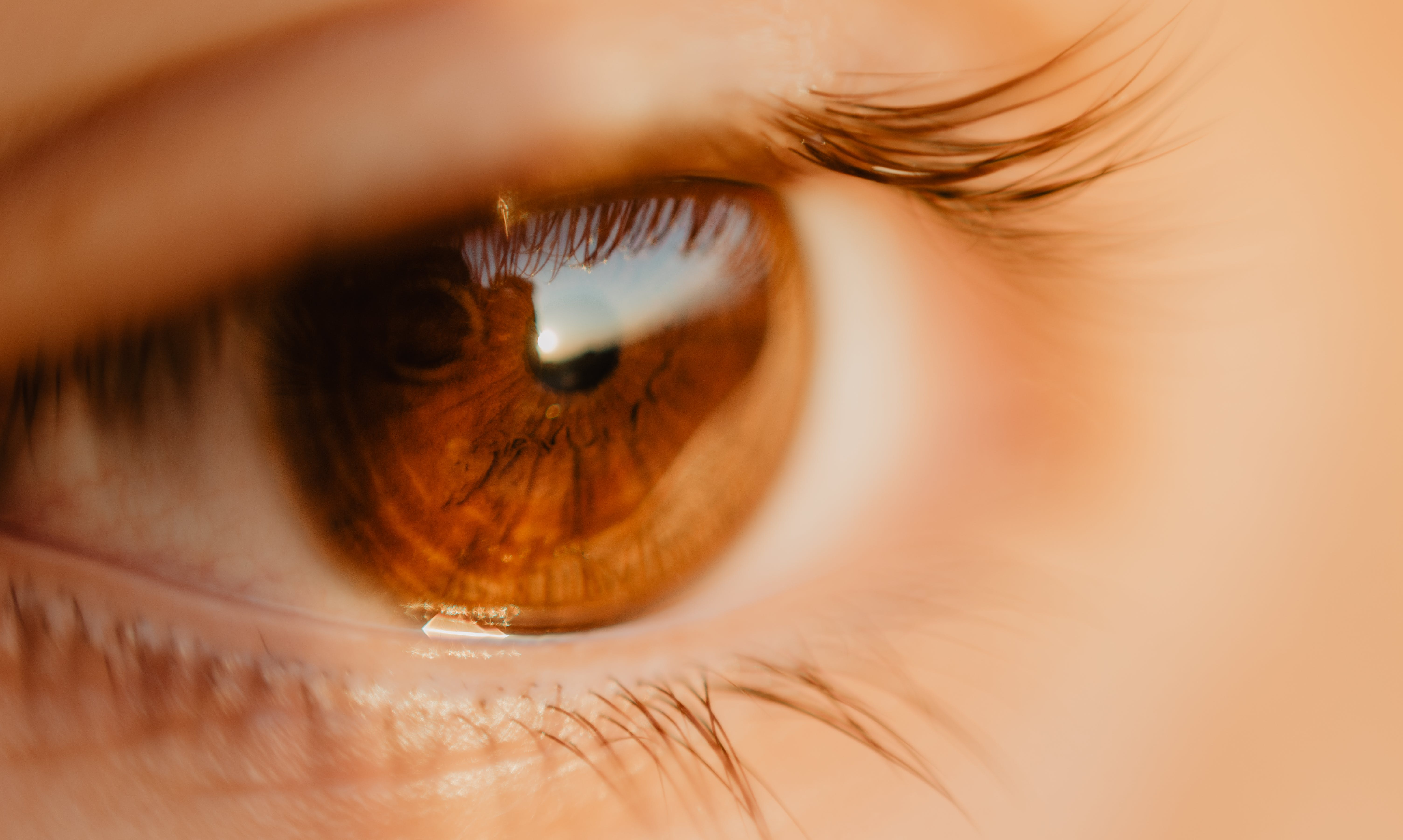 Close-up Photo of Unpaired Brown Eye
