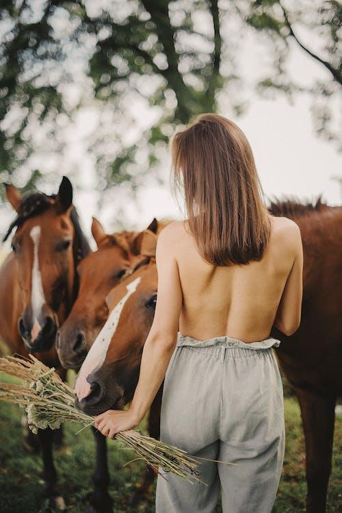 Woman Standing Beside Horses