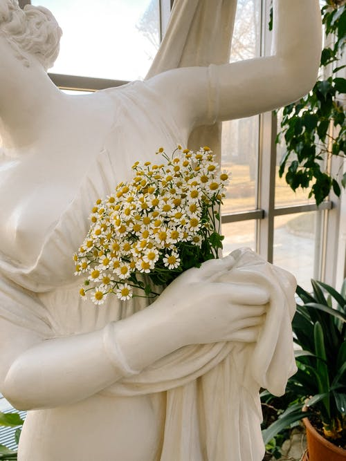 Daisy Flowers on Statue's Hand