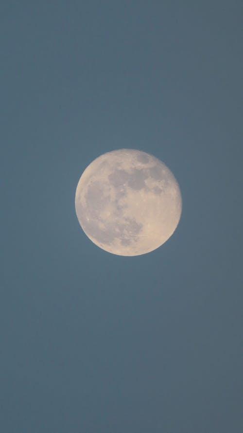 Immagine gratuita di astronomia, completare, crescente