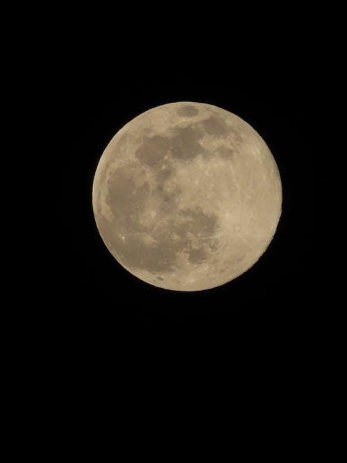 Immagine gratuita di apollo, astrologia, astronomia