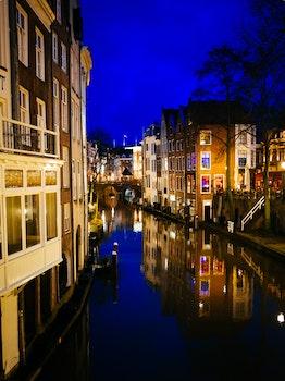 Free stock photo of light, night, water, street