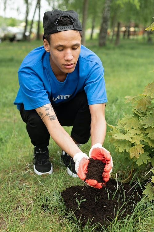 Безкоштовне стокове фото на тему «волонтер, ґрунт, завод»