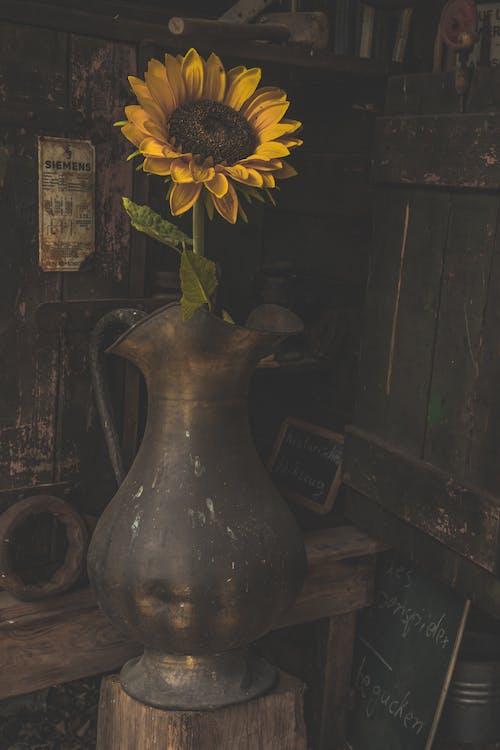 Δωρεάν στοκ φωτογραφιών με vintage, vintage συλλογή, vintage ταπετσαρία