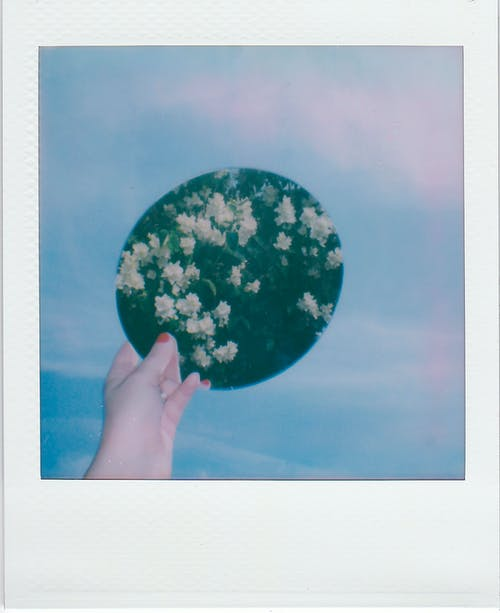 Person Holding Blue and White Floral Ball