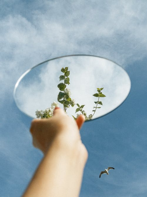 Základová fotografie zdarma na téma cestování, ekologie, h2o