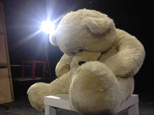 Free stock photo of baby bear, bear, gummy bears, light