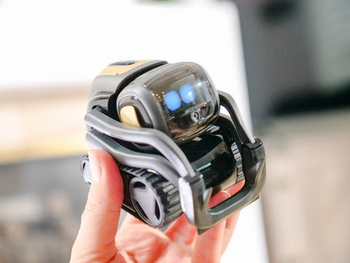 Person Holding Miniature Robot Toy