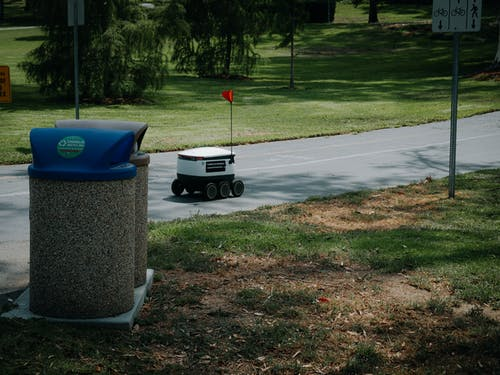 Delivery Robot on Pavement