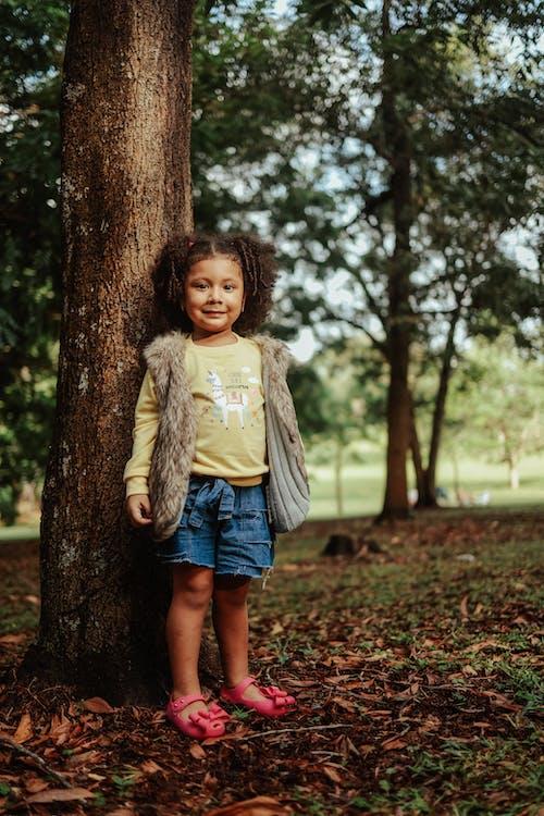 Foto profissional grátis de amor, ao ar livre, árvore