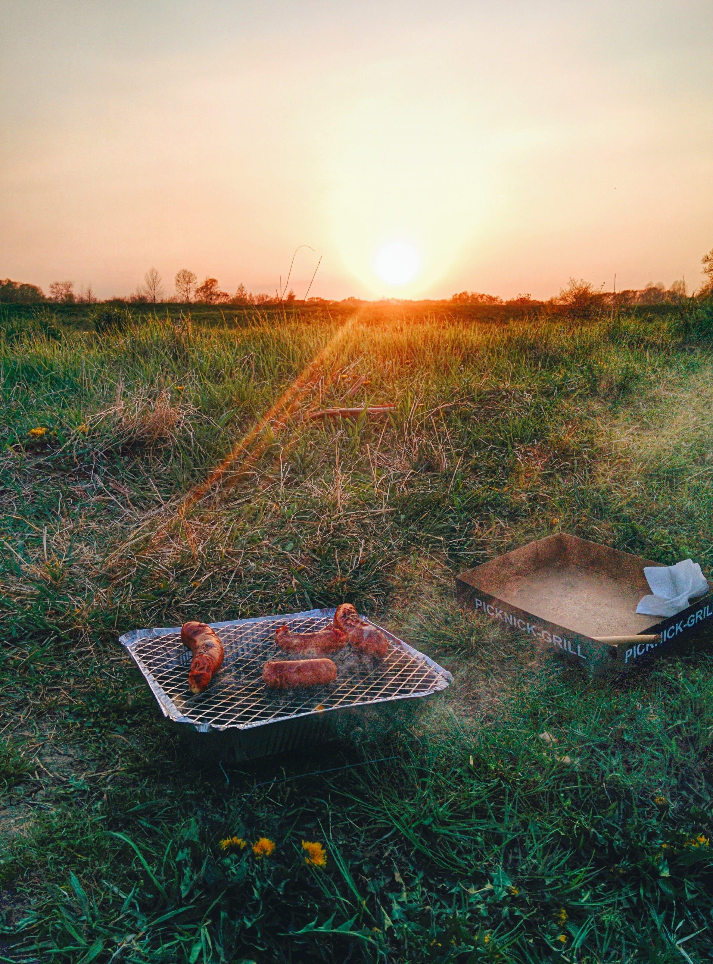 barbecue, bbq, grass