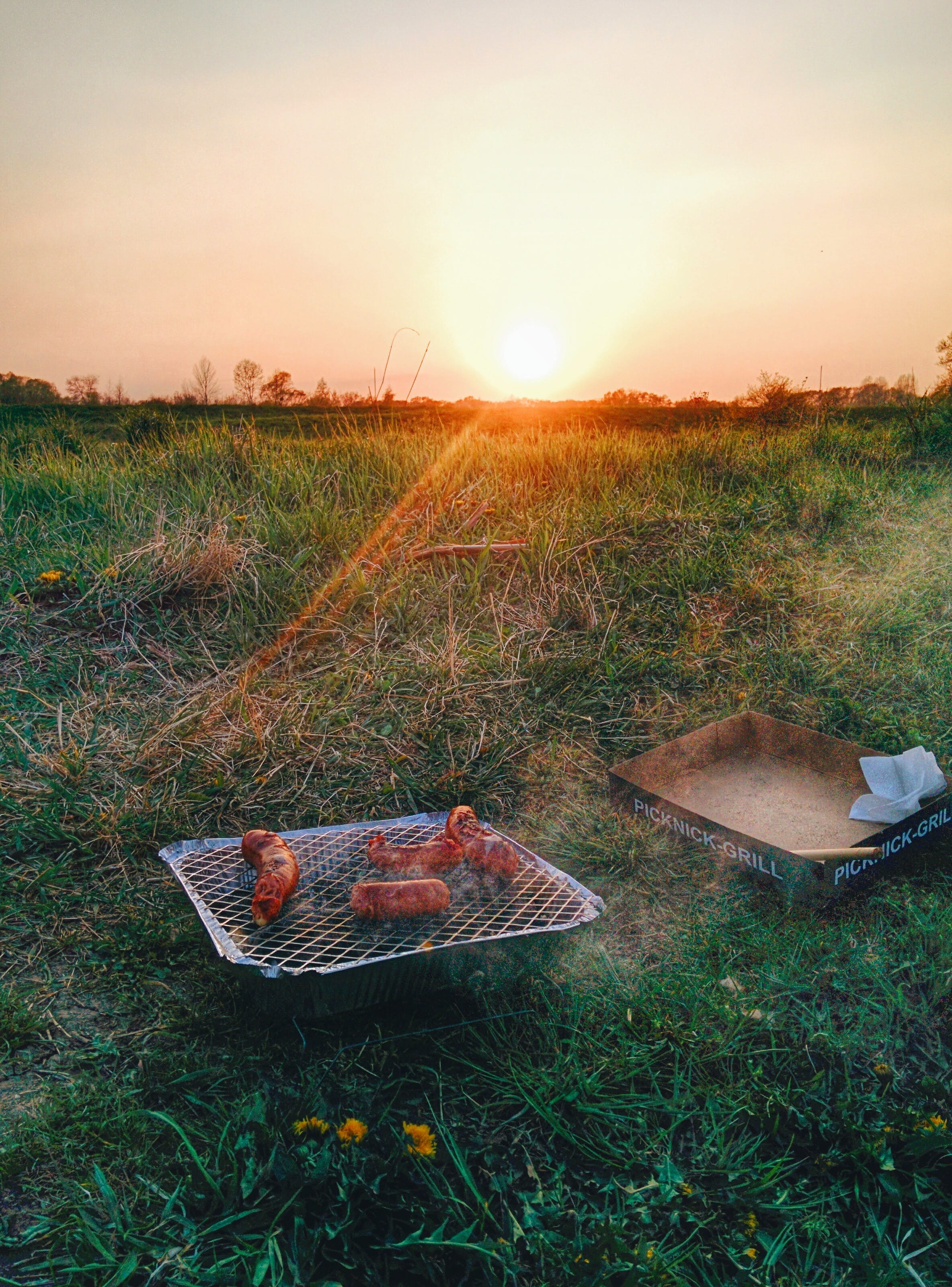 Grilled Sausage on Green Grass