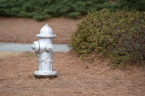 Fire Hydrant on Dry Grass