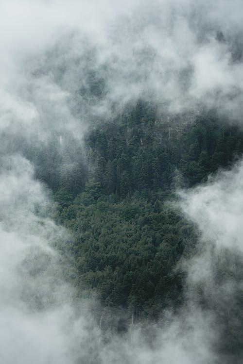 Kostenloses Stock Foto zu @draussen, berg, berge blick