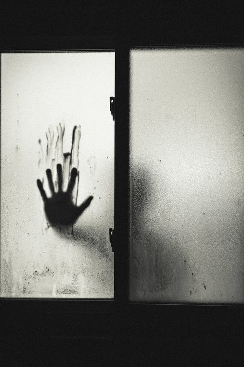 Person Holding Glass Window