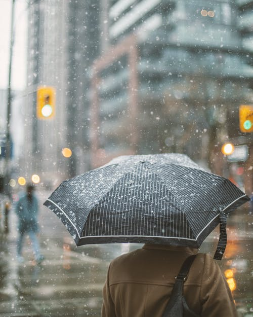 Person in Brown Jacket Holding Black and White Umbrella