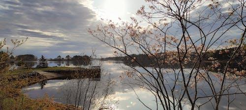 Free stock photo of cove, jetty, lake