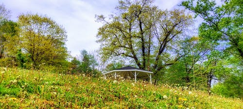 Free stock photo of band stand, hillside, park
