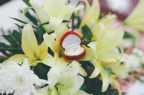 Wedding Rings in a Heart Shaped Jewelry Box