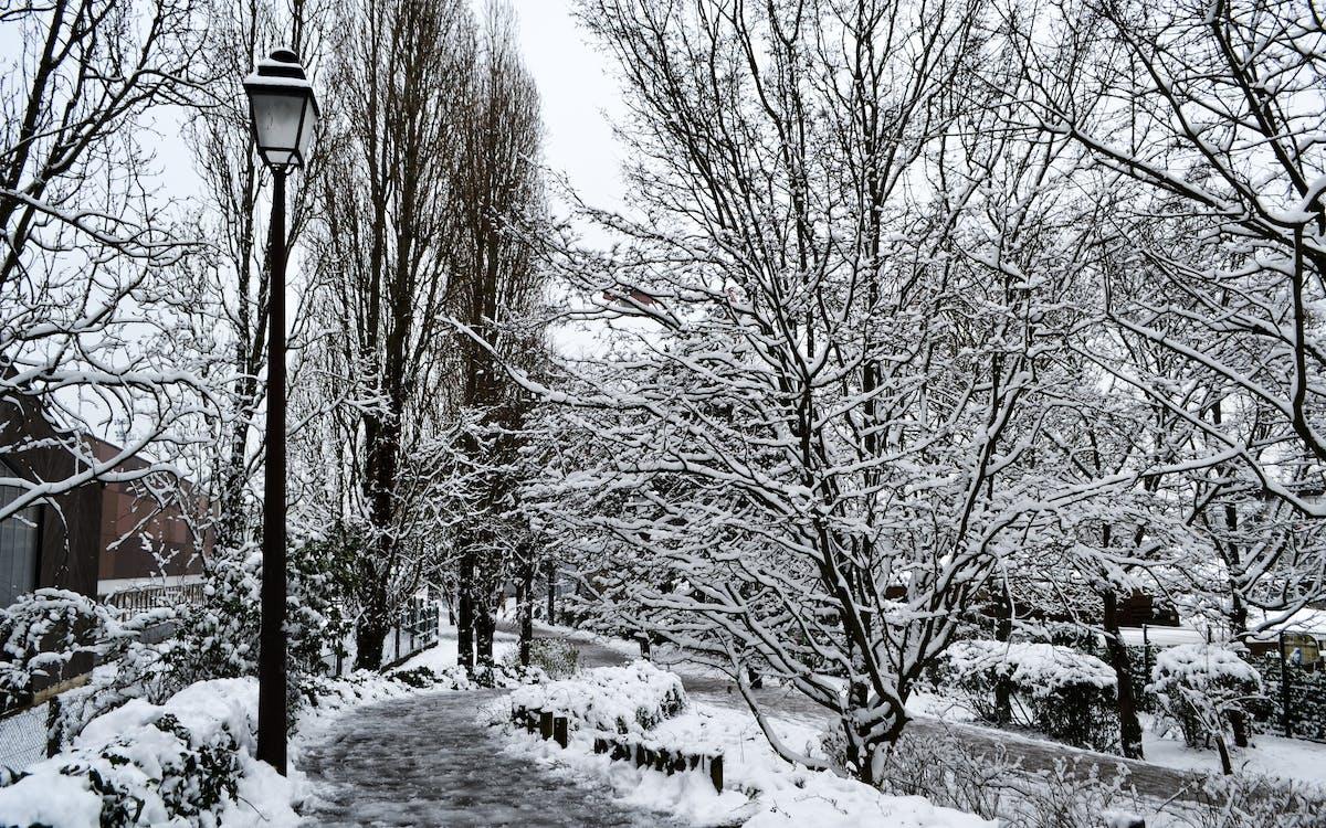 Foto profissional grátis de amor, inverno, neve