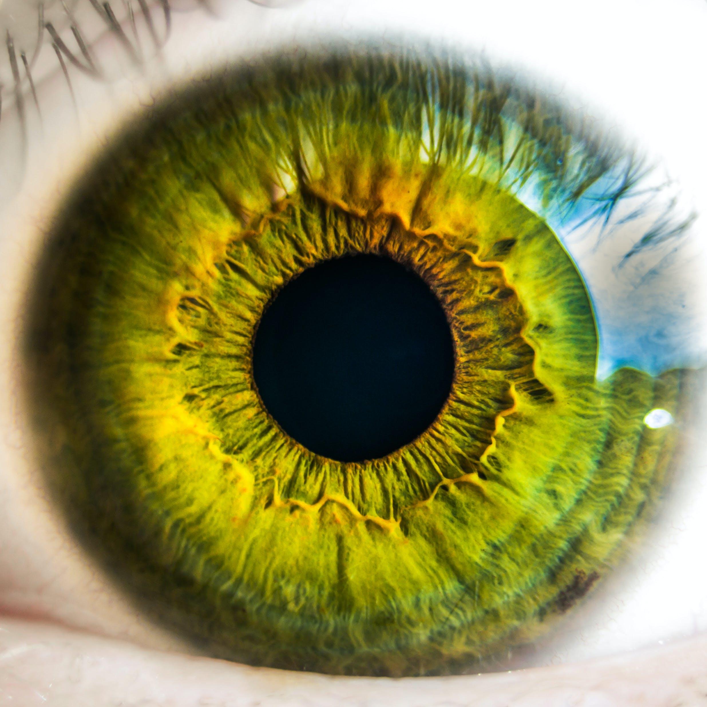 Person's Green Eye