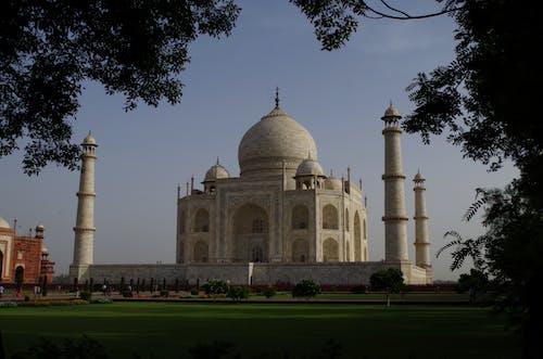 Taj Mahal Mausoleum through Branches