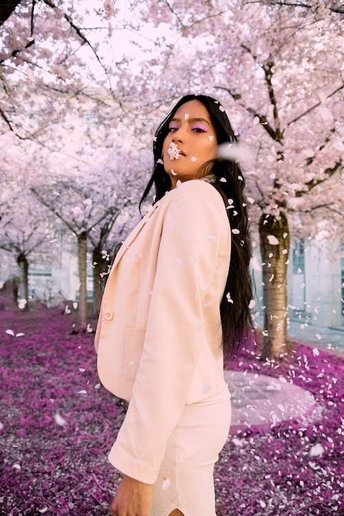 Free stock photo of beautiful, cherry, cherry blossom