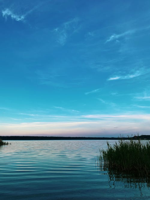 Free stock photo of beach, dawn, lake