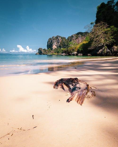 Free stock photo of andaman, beach, coastline